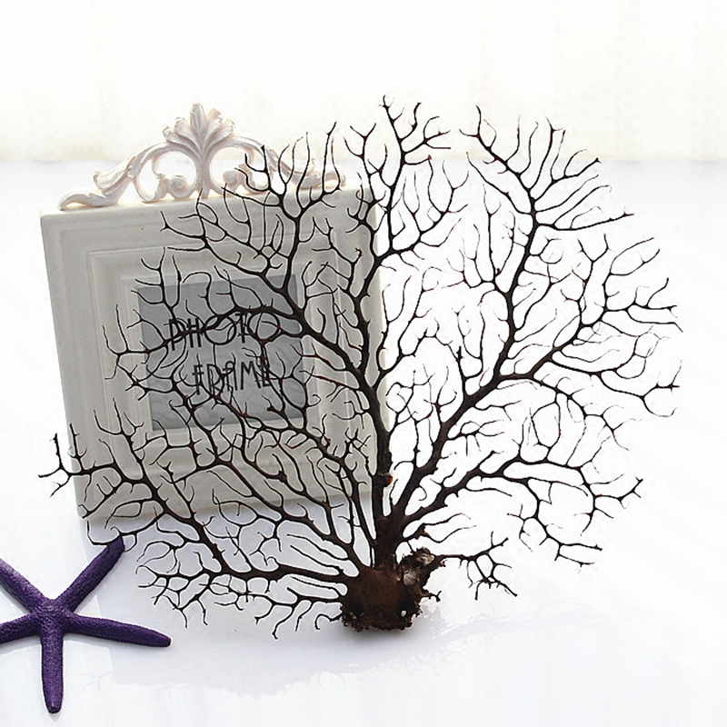 Natural Real Dry Coral Plant Tree Branch for Photo Frame Fish Tank Wedding Christmas Home Office Furniture Decor F5308
