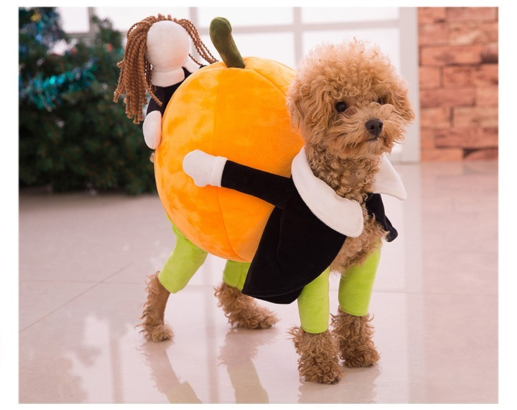 new funny pumpkin dog costumes halloween novel pumpkin pet coat fleece small dog super cute costumes - Halloween Costume For Small Dogs