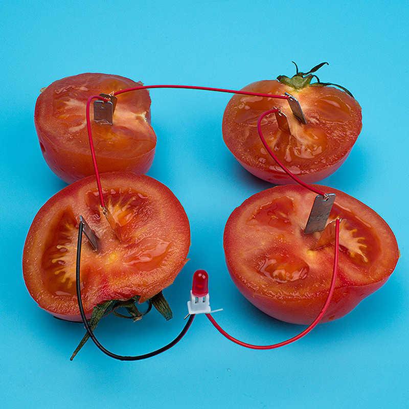 Kit scientifique de Bio-énergie, alimentation de fruits, électricité, jouet éducatif, pour enfants et étudiants