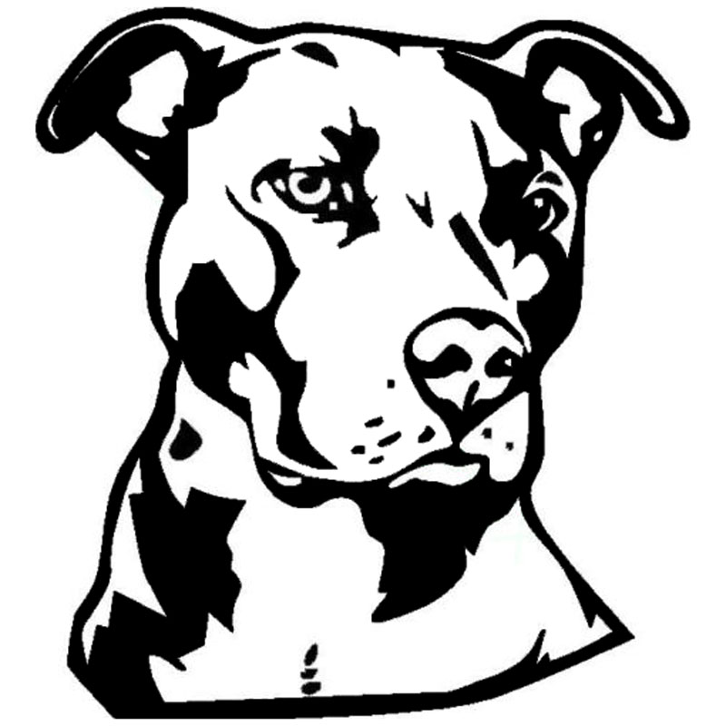 Line Drawing Of A Dog S Face : Cm pit bull face vinyl decal car styling animal
