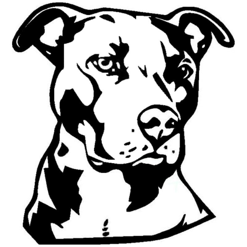 "10/"" Ban Stupid Pitbull Vinyl Decal Pit Bull sticker dog"