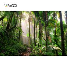 Laeacco Tropical Jungle Rain Forest Palm Tree Green Natural Scenic Photo Backdrop Photography Background For Studio