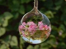 6 шт./компл. круглый висит стеклянная плантаторов, сочные террариум посадки для декор сада, домашнее украшение