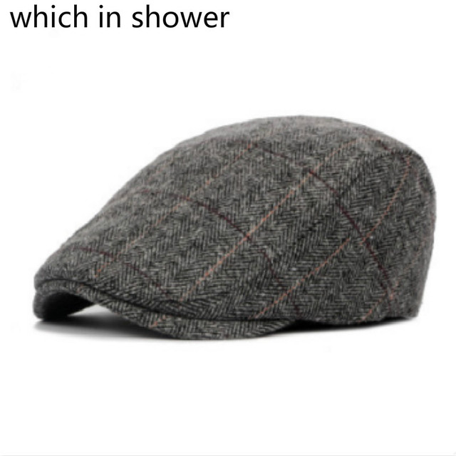 319b41b2480 Which in shower autumn thick warm beret for old men stripe British style  winter hat wool male flat cap male peaked duckbill bone