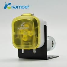 Mini DIY Dosing Pump Peristaltic pump Dosing Head For Aquarium Lab Analytical Water Pump with High flow (L) kamoer KDS