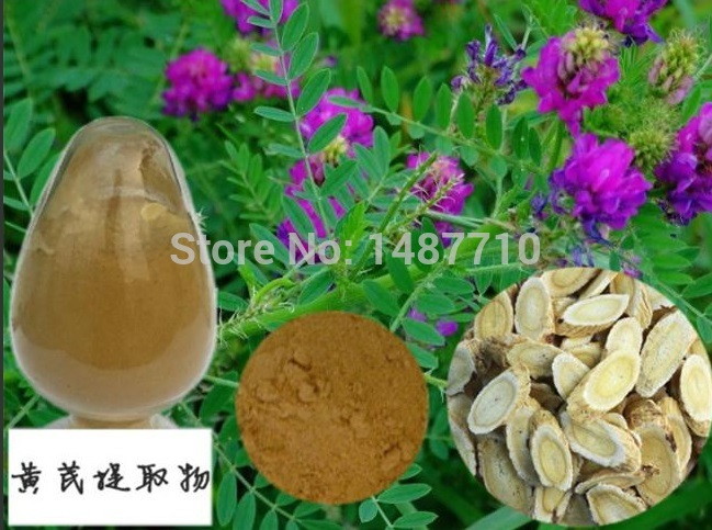 ФОТО 1kg free shipping 100% Nature Astragalus root extract 50% polysaccharide UV