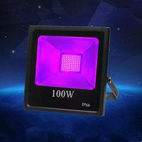 30W 100W US UK EU plug LED Flood Light Waterproof AC85 265V Purple DJ Disco Nightclub KTV Festival Party Stage Lighting Effect