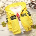 New Spring/Autumn Children Fashion Cotton hoodies, for 1-4 years old kids,Free shipping