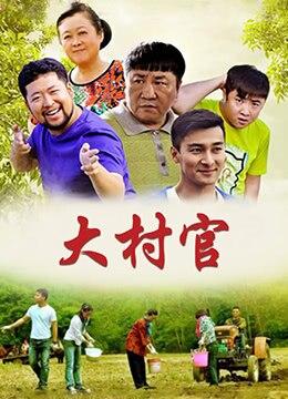 《大村官》2014年中国大陆剧情电视剧在线观看