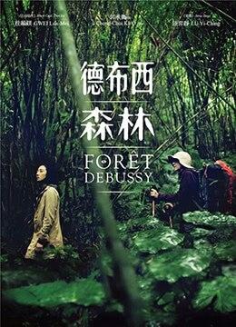 《德布西森林》2016年台湾剧情电影在线观看