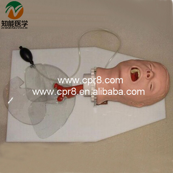 Airway Training Model BIX-J50 W040 infant airway management model medical airway training model