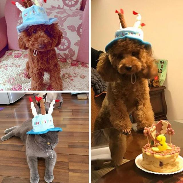 Cute Pet Dog Cake Shape Hat Puppy Pet Supplies Pet Accessories Happy