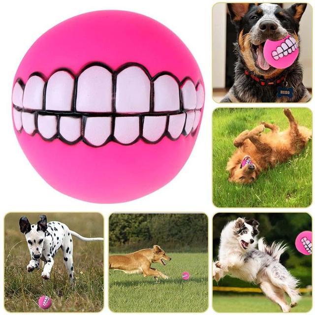 Funny Cute Animali Domestici Cane Cucciolo di Gatto Cani Sonori Chew Palla Gioca