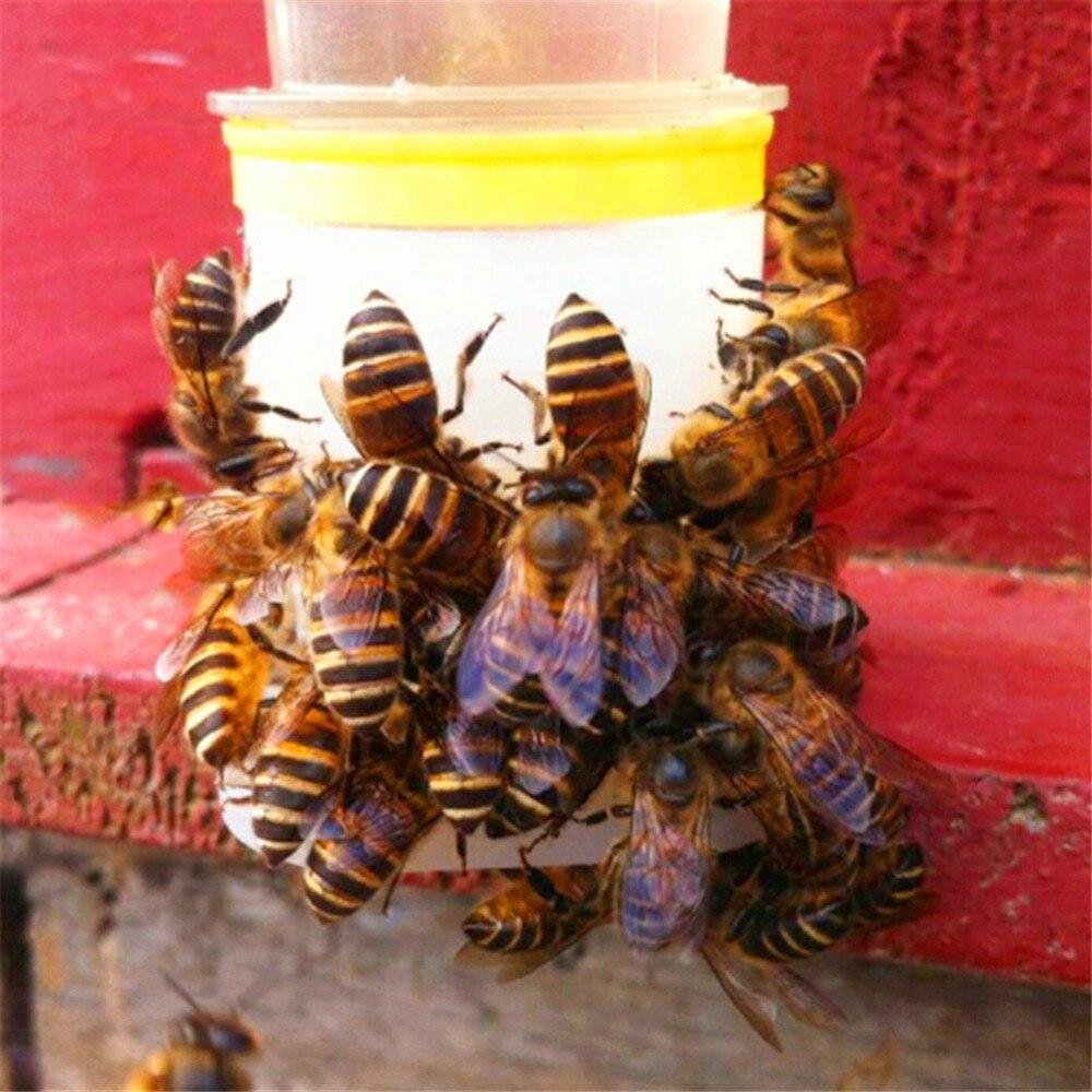 Beekeeping-Tools Easy-Installation Bee-Drinking-Water-Equipment Bee-Queen 2pcs