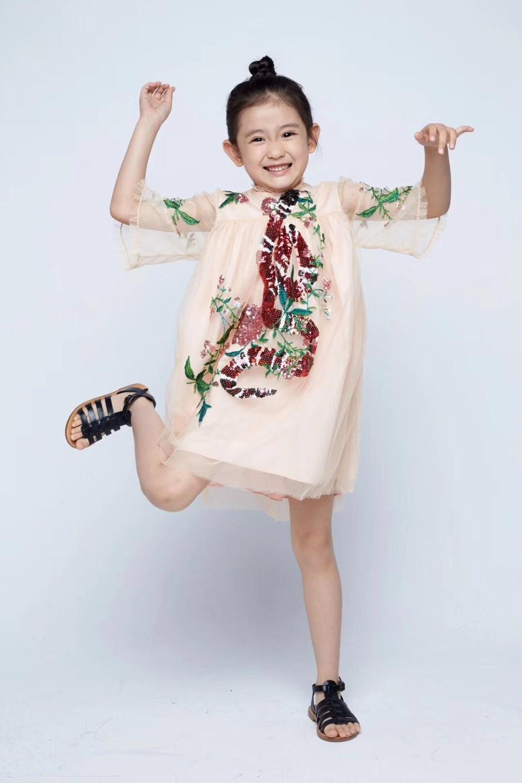 Filles robe broderie formelle dentelle robes parti mignon princesse robe Costume pour bébé fille enfants