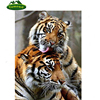 Needle Art DIY 5D Diamond Embroidery King Tiger Full Square Drill Cross Stitch Diamond Mazayka Animals