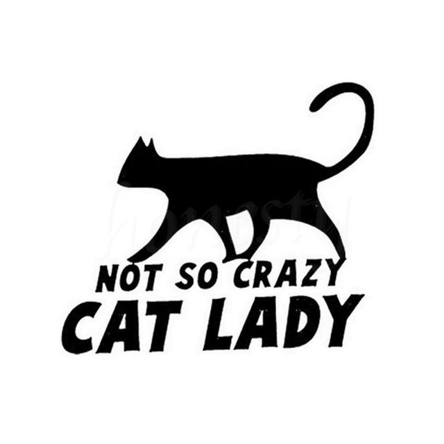 Fashion not so crazy cat lady animal cartoon car sticker wall home glass window door black