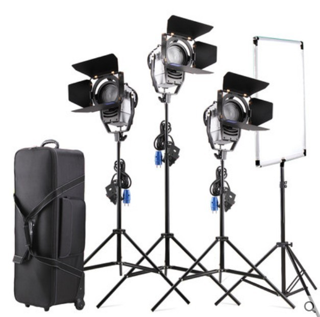 3pcs 100W LED Studio Fresnel Spotlight Dimmer 3200-5500K With Light Stand Flag Reflector Carry Bag For Photography Studio Video