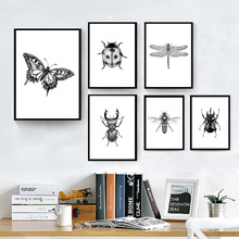 Hand Drawn Bugs Insect Poster Black And White Wall Art Canvas Painting Butterfly Nordic Print Living Room Pictures Unframed