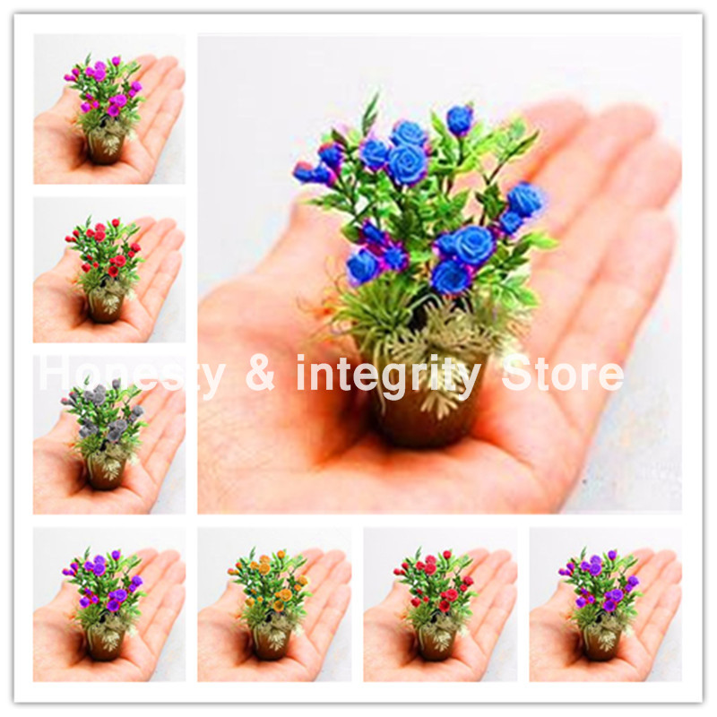 200 Pcs Rare Japan Mini Rainbow Rose Flower Bonsai Gorgeous Bright-Colored Home Garden Plant Balcony & Yard Flower Plant birthday cake
