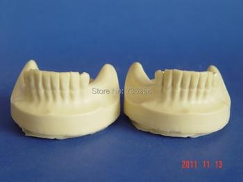 цена на Senior Teeth Planting Practice Model,Teeth Planting Model,Tooth Model,Tooth Jaws Model