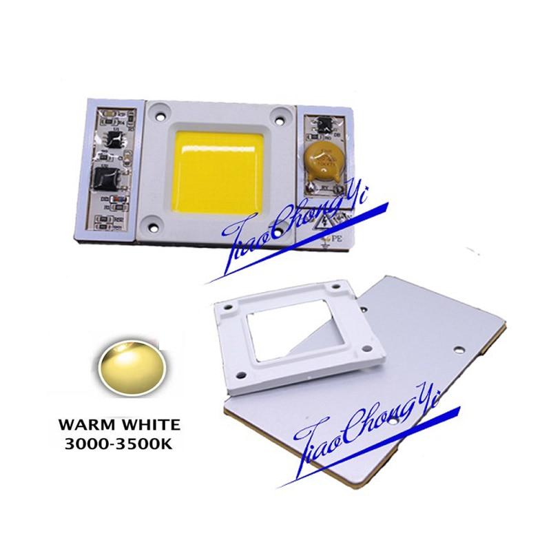 1 шт. AC 220 В 170-300vac высокое Мощность 50 Вт светодиодный чип встроенный в драйвер теплый белый 3000-3500 К LED