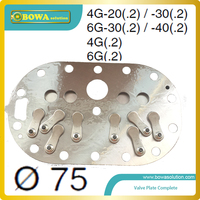 Quiet quality B6 valve plate complete Dia.75 for repairing Bitzer 4G and 6G refrigeration compressor