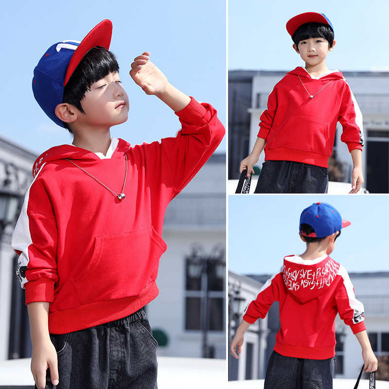 Boy Sweatshirt 2018 New Fashion Autumn Kids Clothes Hooded Long Sleeve Coat Baby Sweatshirt Toddler Hoodie Children Tops 8 10 12 цены