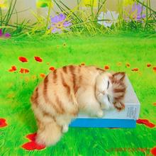 simulation cat polyethylene & furs sleeping cat model gift about 20x11x16CM 230