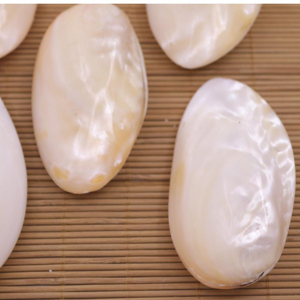 Купить с кэшбэком 5 PCS 80mm-90mm Natural Clam Loose Shell No Hole Collectibles