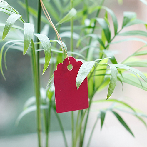 100 Pcs Waterproof Strip Line Gardening Labels Signs Plant Hanging Tags