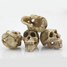 2018 New Arrival Halloween Aquarium Decorative Resin Skull Crawler Dragon Lizards Decoration Ornamento drop-Shipping(China)