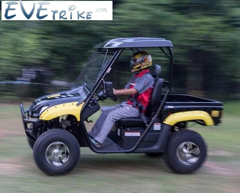 Evetrike Professional EV Solution Own Factory Electric UTV Or Fuel Automatic Transmission Type Disc Brake UTV Farm UTV Buggy