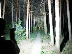 Image 5 - 10T6 11T6 12T6 13T6 14T6 XML T6 ultra jasne led latarka 18650 przenośny wysokiej mocy latarka taktyczna 5 trybów polowanie Camping