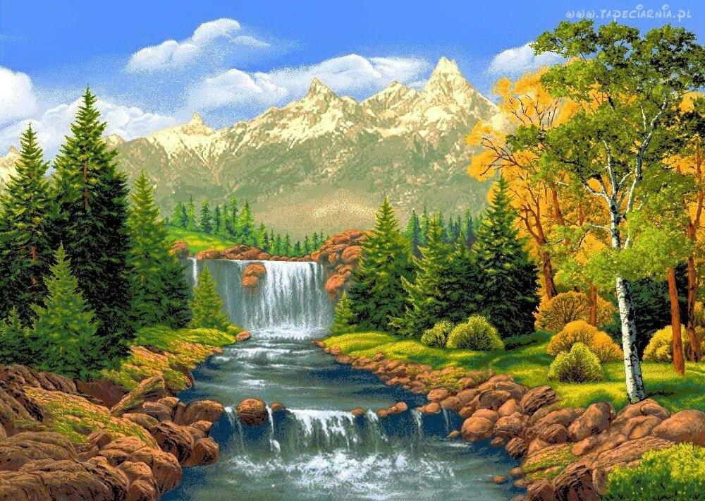 Любви открытка, открытки живой природа