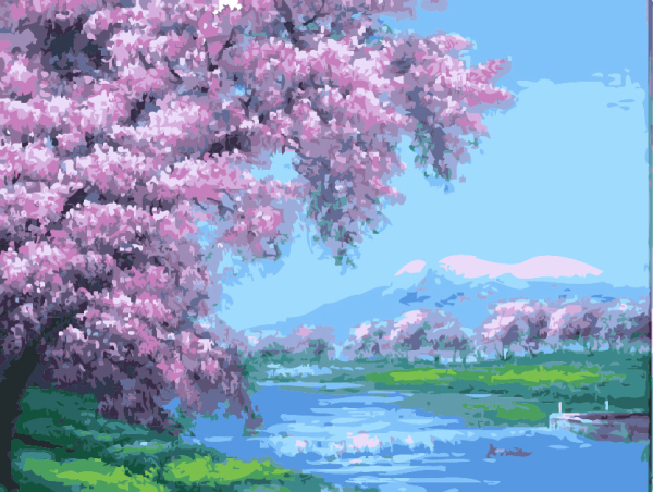 Frameless picture on wall acrylic painting by numbers canvas painting art Christmas gift Cherry blossoms coloring by numbers