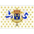 Королевский Стандартный Королевства Франции 1643-1765 флаг Ensign 3ft x 5ft полиэстер баннер летающие 150*90 см, уличный флаг на заказ
