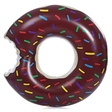 Doughnut Swimming Ring