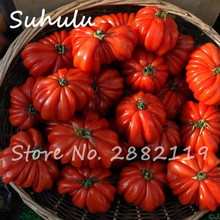 100 pcs beef hybrid rare red  tomato seeds, Extra-meaty, Extra-tasty tomato organic food seeds sweet fruit and vegetables bonsai