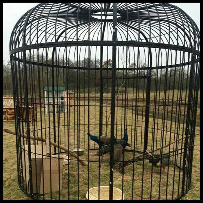Super grande cage à oiseaux en fer forgé paon décoration de mariage personnalisée accessoires cage à oiseaux affichage extérieur grande cage - 4