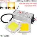 100% Epistar LEDs Full Watt Ultra Bright COB LED Chip 100W 50W 30W 20W 10W Lamp DIY Project Flood Light Source with LED Driver