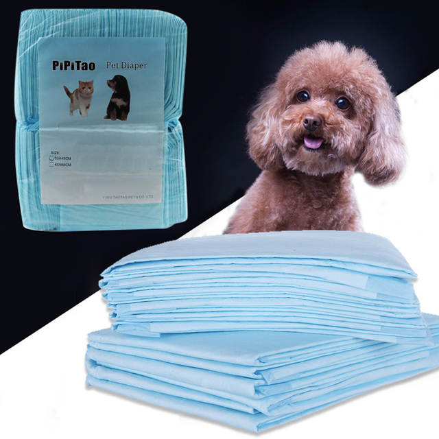 Set Diapers for Dogs