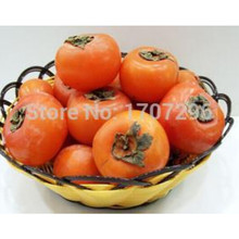 Home Garden Plant Seeds PERSIMMON TREE Diospyros Fruit Seed – 1pcs / lot