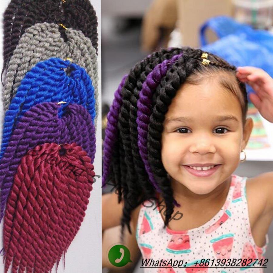Big Twist Braids With Color Www Imgkid Com The Image