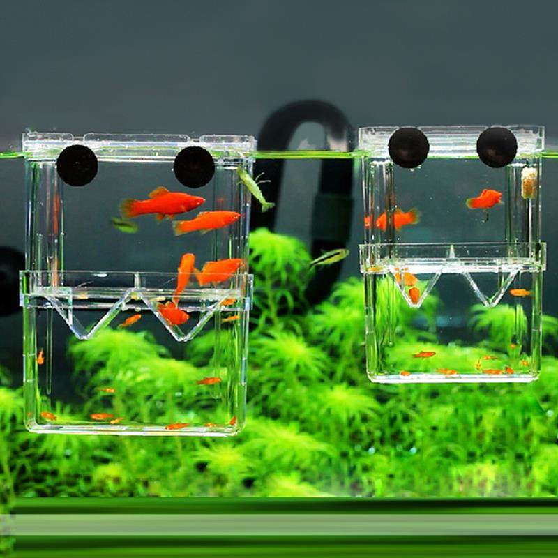 2 size acrylic aquarium floating breeding box double for Betta fish tank size