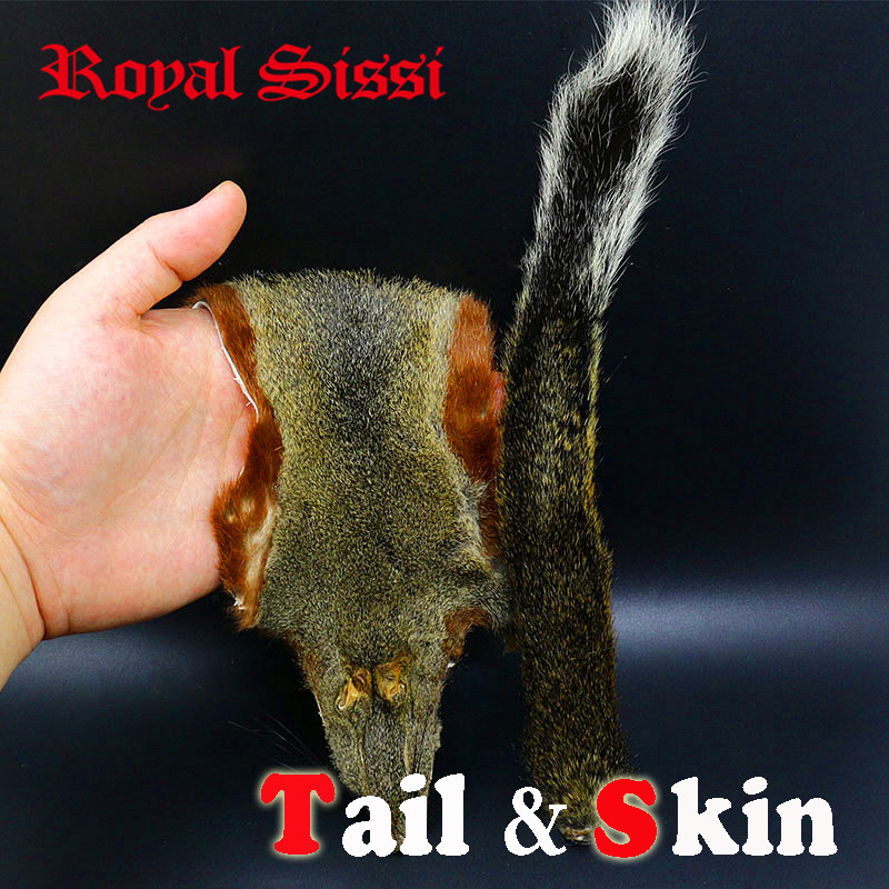 Royal Sissi brand Pine tree squirrel Tail & whole skin combo 6-7 long best pine squirrel tail fly tying hairs& furs materials