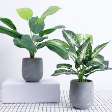 Artificial Flower Nordic Minimalist Style Simulation Green Plant Potted Turtle Leaves Cactus Grass Home Plant Decoration