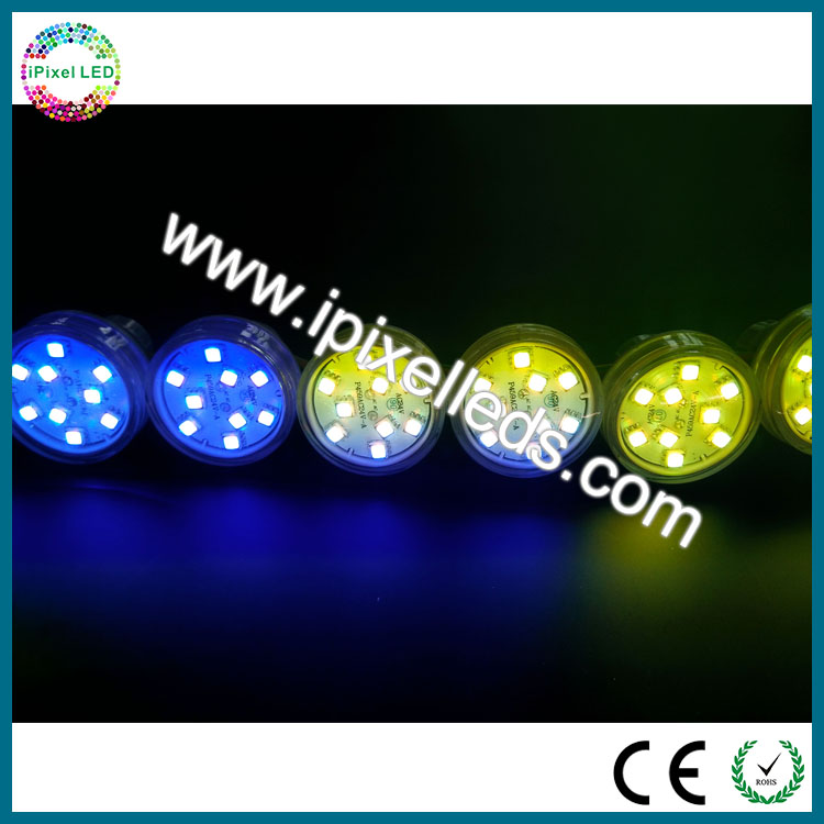 RGB Pixel LED Automatic ferris digital color changing LED pxiel