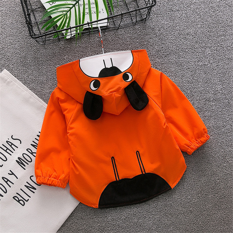 Hyweacvar spring autumn 2018 Sweatshirt outerwear children