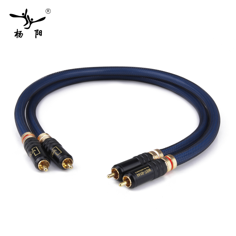YYAUDIO 1 Pair Rca Cable Siltech G5 Top Grade Silver Plated RCA Male to Male Cable free shipping pair siltech sq 88b g5 silver plated interconnect cable with pailiccs rca plug connector